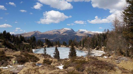 Tonadico, Italy: Riserva naturale Colbricon BUSE DELL'ORO