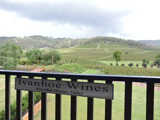 Ivanhoe Wines: Our view as we enjoyed the wines!