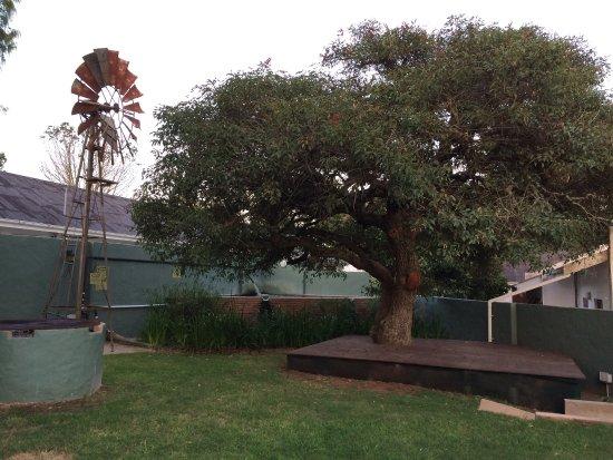 Bathurst, Südafrika: photo0.jpg