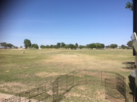 Hobbs, NM: View from the door of my RV (with dog yard deployed)