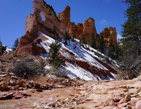 Hike To Tower Bridge In Bryce Canyon Picture Of Backcountry Journeys Flagstaff Tripadvisor