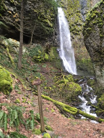 Cascade Locks, ออริกอน: Cabin Creek Falls