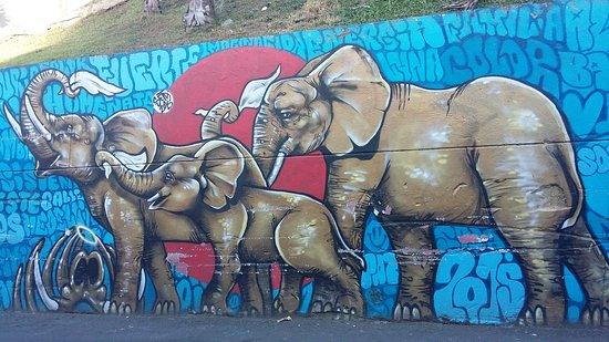 Increible Un Ejemplo Casa Kolacho Picture Of Comuna 13 Graffiti - Graffitis-en-casa