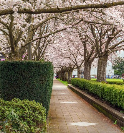 Oregon State Capitol: Quiet , shady paths even on busy days
