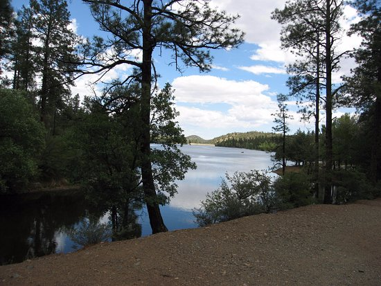 Lynx Lake Recreation Area: View of Lynx Lake from an inlet on (I think) the NE side.