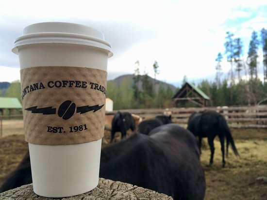 Columbia Falls, MT: Coffee back to work with the horses