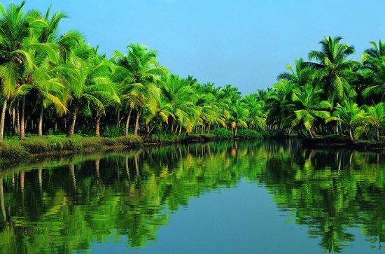Kochi Tour: Alleppey (Alappuzha...