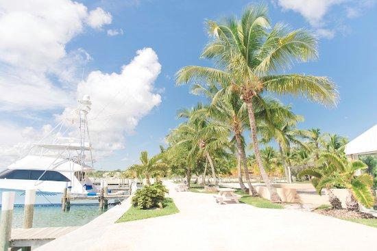 Abaco Beach Resort and Boat Harbour Marina: Marina
