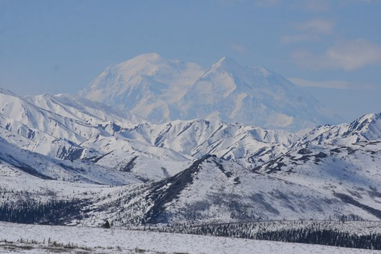 Park Road: Denali from the North side