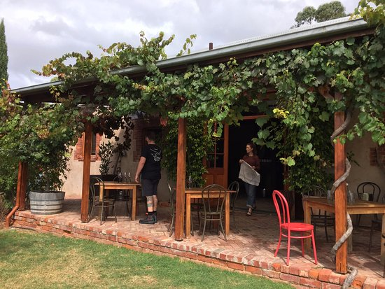 Samuel's Gorge: wine tasting inside or out on the veranda under the vines