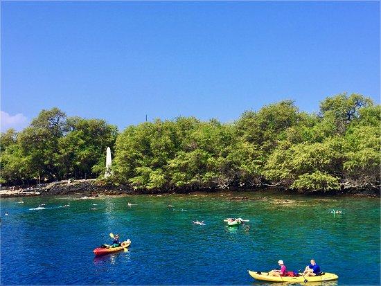 Kayak Big Island Captain Cook