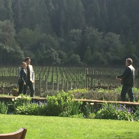 Goldeneye Winery: Gorgeous place for photos