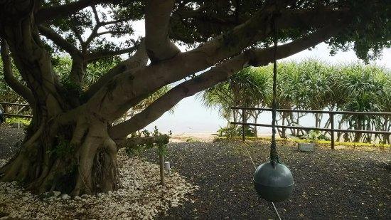 Oshima-gun Tatsugo-cho, Japón: 海への入り口周辺