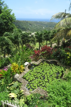 Palm Tree Gardens Botanical Garden: Looking To The SE (Atlantic) Side Of  Grenada