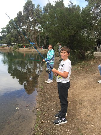 Rhyll Trout and Bush Tucker Farm : photo0.jpg