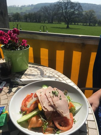 Pontypool, UK: Lovely salad with the wife! Great views