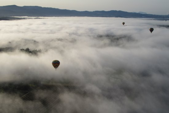 Napa Valley Aloft Balloon Rides: Balloons over the Valley April 2017