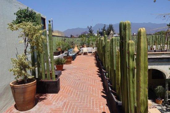 Casa de Sierra Azul: Courtyard rooftop