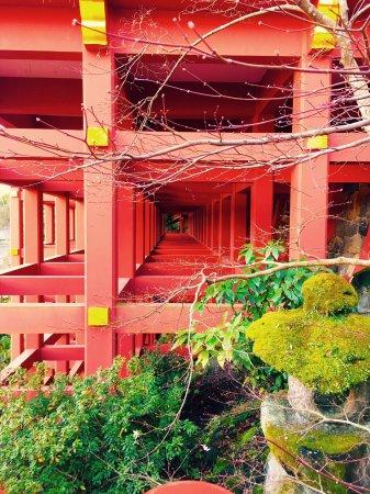Kashima, Japan: photo2.jpg