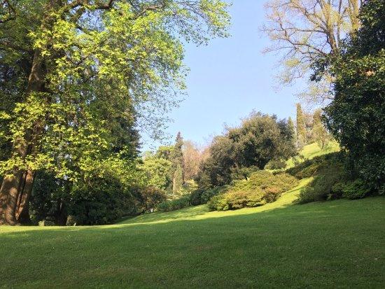 Giardini picture of i giardini di villa melzi bellagio tripadvisor - Giardini di villa melzi ...