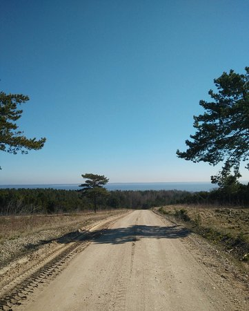 Curonian Spit / Kursiu Nerija National Park: Towards the Curonian lagoon, mostly the lagoon parallels your path though
