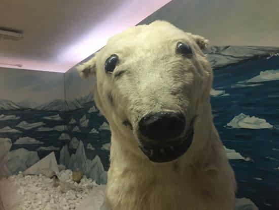Tiksi, Rusia: Один из самых старых экспонатов