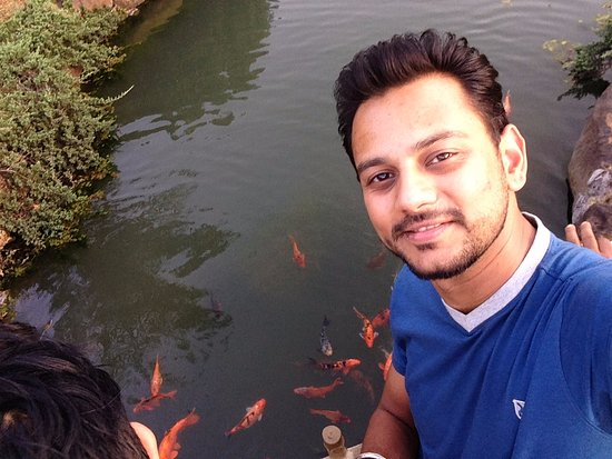 Pune Okayama Friendship Garden: fishes in the pond/small stream
