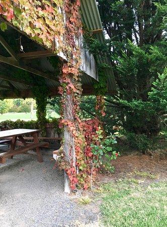 Sanctuary Park Cottages: photo4.jpg