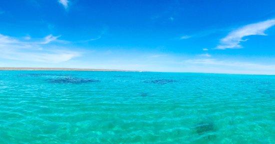 Kings Ningaloo Reef Tours Exmouth: photo2.jpg