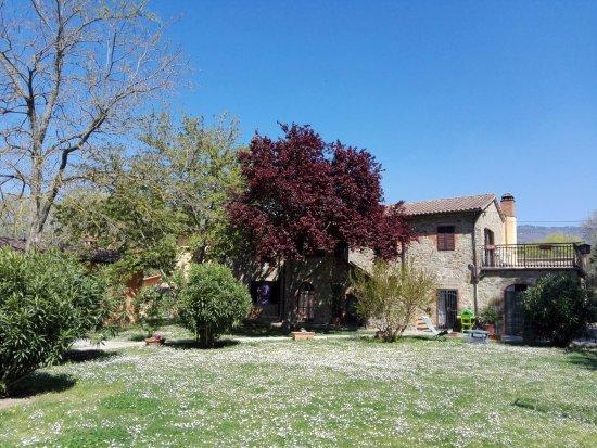 Al Casolare: vista da giardino