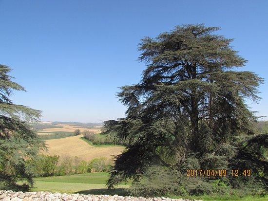 Gramont, França: paysage