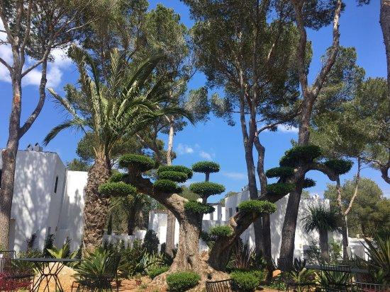 Hotel Casbah Formentera: photo0.jpg