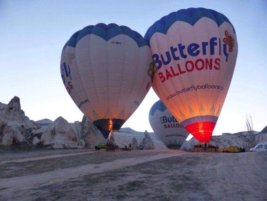 Butterfly Balloons: photo0.jpg