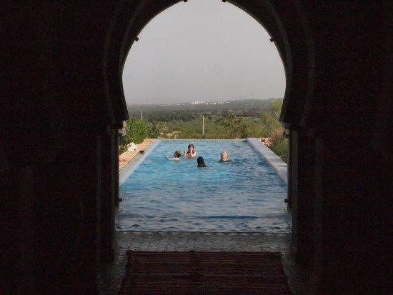 Villa Gonatouki: The Long Pool