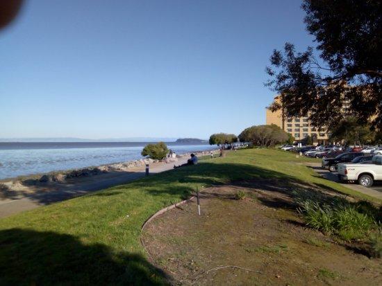 Millbrae, CA: Приливные болота, Mariott Waterfront