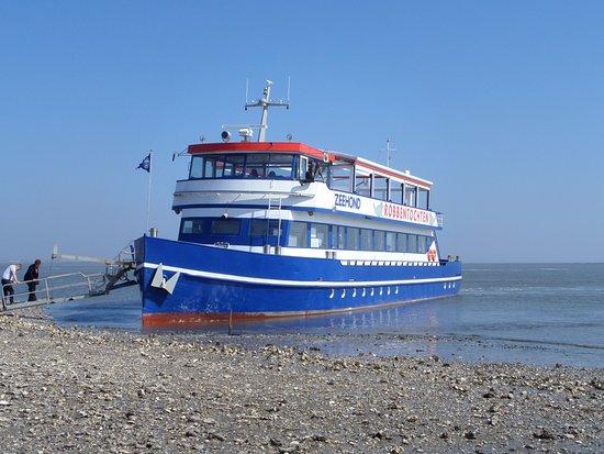 """Hollum, เนเธอร์แลนด์: le bateau à l'arrêt """"coquillages"""""""