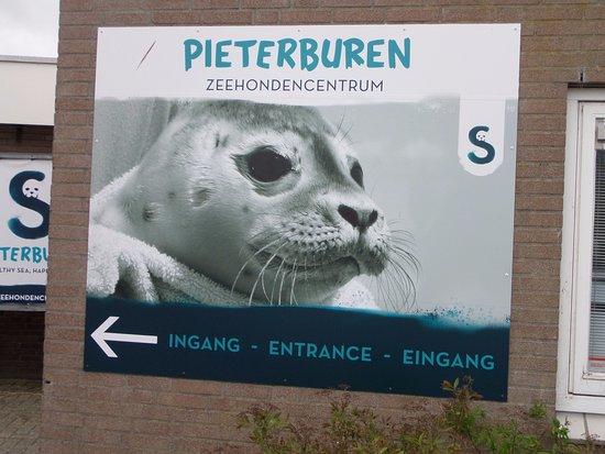 Pieterburen, Niederlande: l'entrée
