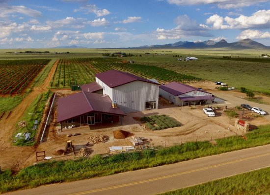 Flying Leap's Estate Winery & Distillery in Elgin boast a winery, distillery and two tasting roo