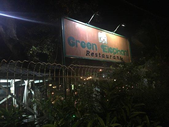 Green Elephant Image