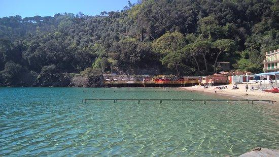 Paraggi, Italia: i colori di acqua e vegetazione circostante