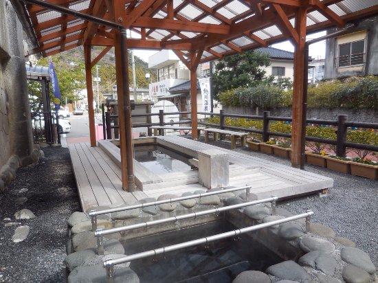 Atagawa Yunohana Park