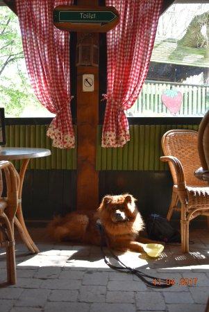 Horst, The Netherlands: En na de tocht kun je heerlijk tot rust komen op terras buiten of gezelige binen