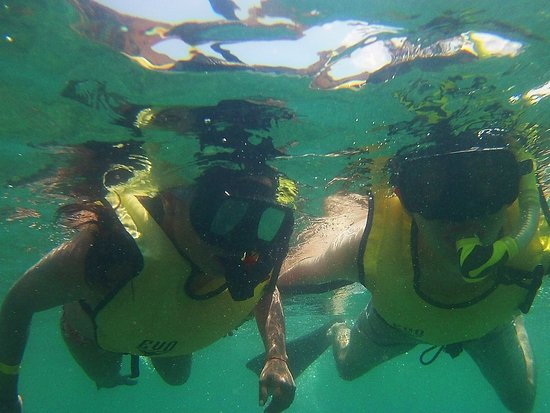 Calipso Dive Center: photo1.jpg