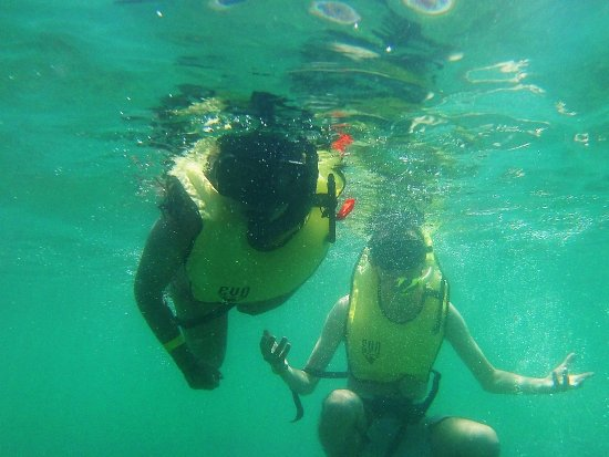Calipso Dive Center: photo2.jpg
