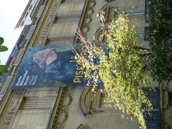 Musée Marmottan : 20170411_161526_large.jpg