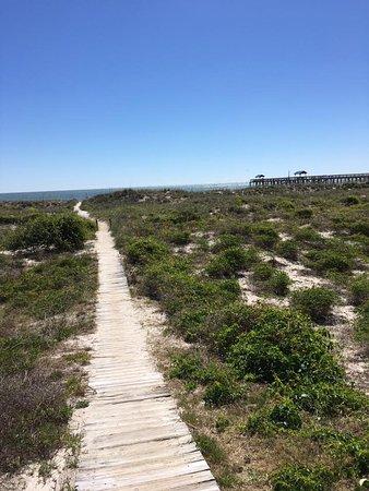 Landscape - Picture of Beachside Motel, Amelia Island - Tripadvisor