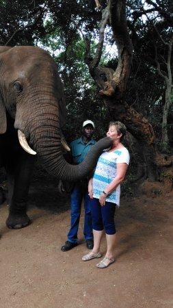 Hartbeespoort, South Africa: IMG_20170410_151111_large.jpg