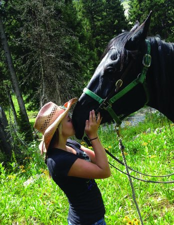 Alpine, WY: All our horses are gentle and affectionate.