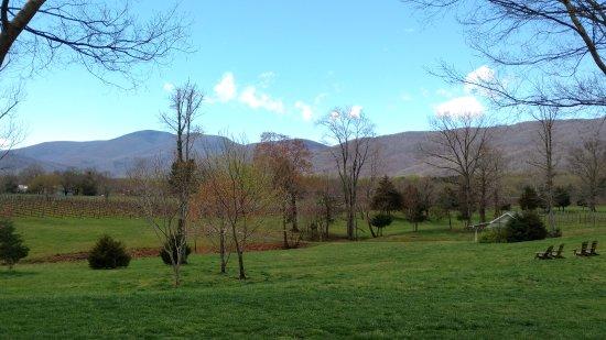 Afton, VA: The view!