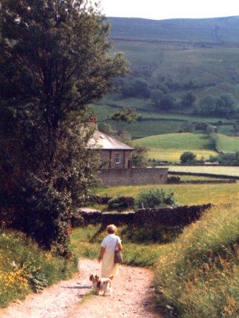 Yorkshire Dales National Park, UK: Yorkshire Dales  © Robert Bovington